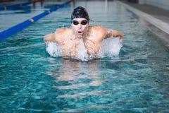 Подходящее заплывание человека Стоковые Фотографии RF
