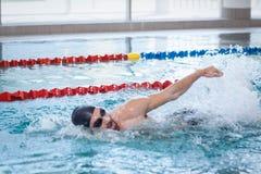 Подходящее заплывание человека Стоковое фото RF