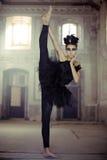 Подходящий молодой артист балета как лебедь Стоковые Фотографии RF