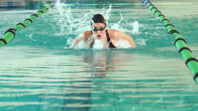 Подходящий пловец делая ход бабочки в бассейне акции видеоматериалы