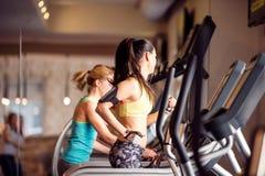 2 подходящих женщины бежать на третбанах в современном спортзале Стоковые Фото