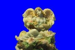 Подчиненное фото ангеликового Стоковая Фотография
