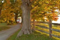 Подъездная дорога гравия страны к ферме стоковые изображения rf