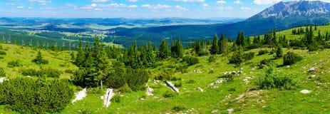 Подъем ландшафта и лыжи Durmitor Стоковая Фотография