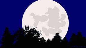 Подъем луны на древесине видеоматериал