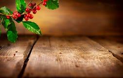 польза кофе предпосылки готовая Реальный завод кофе Стоковые Фото
