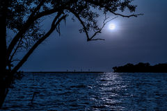 польза таблицы фото ночи ландшафта установки изображения предпосылки красивейшая Пристаньте к берегу морем с деревом и полнолуние Стоковое Изображение RF