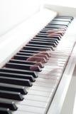 пользует ключом рояль Играть рояля Черно-белые ключи электронный рояль Стоковые Изображения