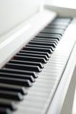 пользует ключом рояль Играть рояля Черно-белые ключи электронный рояль Стоковое Изображение