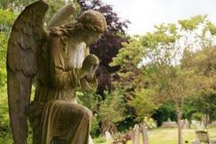 Польностью каменный ангел в цвете Стоковое Фото
