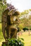 Польностью каменный ангел в цвете Стоковая Фотография