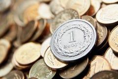 Польская валюта с монетками злотого Стоковое фото RF