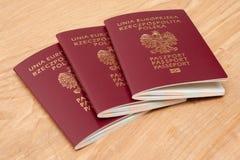 Польские пасспорты стоковые изображения