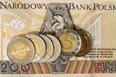 Польский злотый, конец-вверх Стоковое фото RF