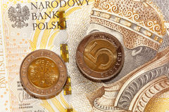 Польский злотый, конец-вверх Стоковая Фотография