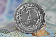 Польский злотый Стоковая Фотография RF