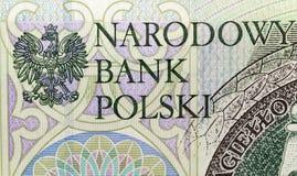 Польский крупный план злотого Стоковые Изображения RF