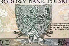 Польский крупный план злотого Стоковое Фото