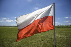 Польский флаг развевая на ветре, временя, солнечный день Стоковая Фотография
