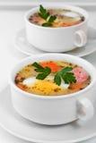 Польское Zurek, суп пасхи Стоковые Изображения