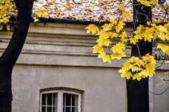 Польша, ландшафт, предел, панорама, дом, warszawskie azienki 'Å, Стоковое Изображение