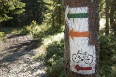 Польша, горы Gorce, метки следа пылая Стоковая Фотография