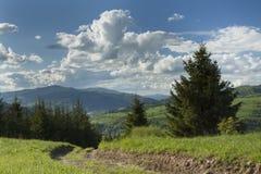 Польша, панорамное Viev горной цепи Gorce, эффектное Clou Стоковые Фото