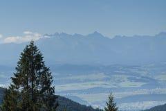 Польша, панорамное Viev гор Tatra стоковое фото
