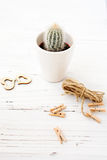 Полюбите кактусы сердец с деревянной и естественной веревочкой Стоковое Изображение