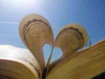 Полюбите книгу Стоковые Изображения