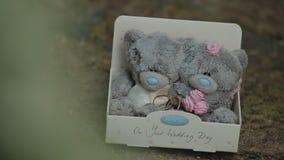 Полюбите концепции плюшевого медвежонка в подарочной коробке сердца на древесине сток-видео