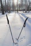 Поляки лыжи стоковые фотографии rf
