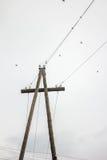 Поляк с проводами Стоковое Изображение