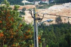 Поляк электричества Стоковая Фотография RF