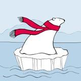 Полярный медведь в красном шарфе Стоковые Фотографии RF