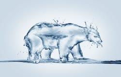 Полярный медведь плавя, глобальное потепление Стоковое Изображение RF