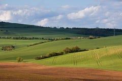 Поля весны Rolling Hills и зеленой травы Стоковое Фото