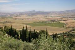 Поля в Тоскане стоковая фотография