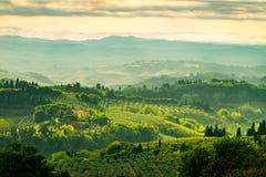 Поля в Тоскане стоковое изображение