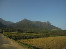 Поля в японской сельской местности Стоковые Изображения RF