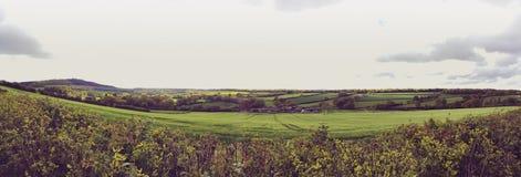 Поля в westhope Шропшире на после полудня весны Стоковые Фото
