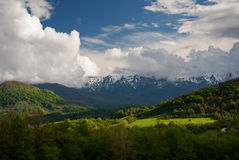 Поля горы весны Стоковые Фото