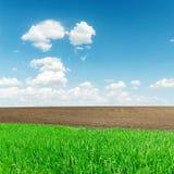 Поля земледелия зеленые и черные и облака Стоковое Фото