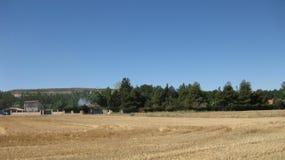 Поля и ландшафты стоковое изображение rf