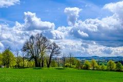 Поля и деревья около Праги Стоковое Изображение RF