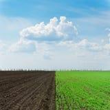 2 поля и облака земледелия Стоковая Фотография RF