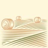Поля и стога сена бесплатная иллюстрация