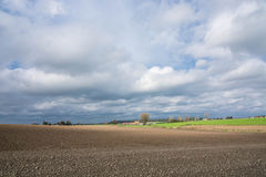 Поля, осень и цвета Стоковое Изображение