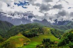 Поля риса в деревне Sapa, Вьетнаме Стоковая Фотография