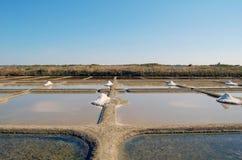 Поля соли выигрывая в Бретане Франции Стоковые Фото